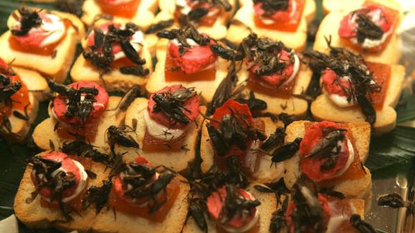 Tapas d'insetti