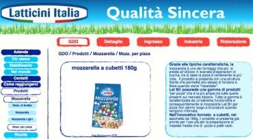 latticini-italia-lat-bri-mozzarella