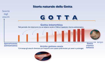 schema-GOTTA
