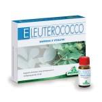 radice  eleuterococco