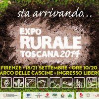 expo_2014