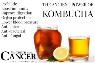 TTAC-Kombucha-Tea-Graphic
