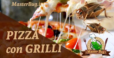 pizza-grilli
